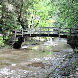 Bridge Over Buttermilk Creek 2 by Carol McGrath