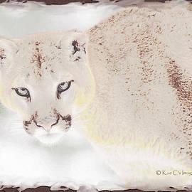 Puma Eyes by Kae Cheatham