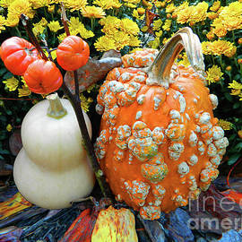 Pumpkin and Squash by Emmy Marie Vickers