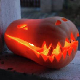 Pumpkin animal lantern by Lenka Rottova