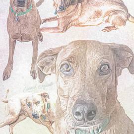 Pup Devotion Collage by Mariecor Agravante