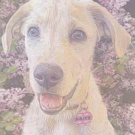 Pup Fondness by Mariecor Agravante