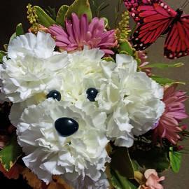 Puppy Dog Flowers by Joan Moschella