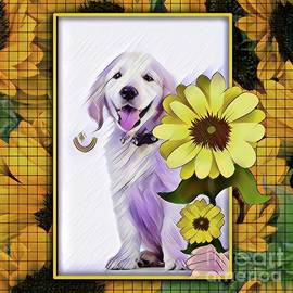 Puppy sunflower by Laurence Stefani