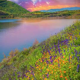 Pure Heaven by Lynn Bauer