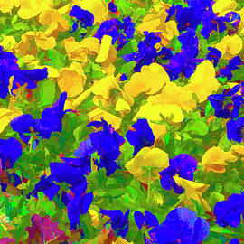 Purple and Yellow Petunias by Lindley Johnson
