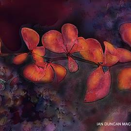 Purple Depths by Ian MacDonald