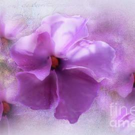 Purple Dream by Elaine Teague