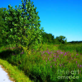 Purple Flowers by the Trail - Square by Frank J Casella