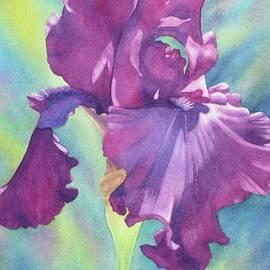 Purple Iris by Andrea Martin