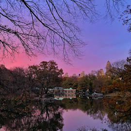 Purple is the Night - Ode to Central Park by Miriam Danar