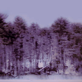Purple  Mauve Forest by Carrie Armstrong
