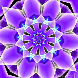 Purple Petals by Raven Deem