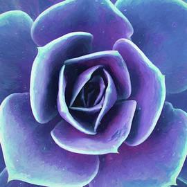 Purple Succulent Painting by Deborah League