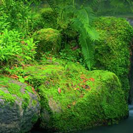 Quaint Falls by Don Schwartz