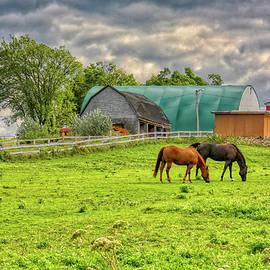 Quebec farm by Tatiana Travelways