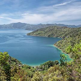 Queen Charlotte Track Hike New Zealand by Joan Carroll