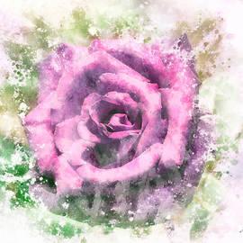 Queen of flowers by Petra Koehler Rose