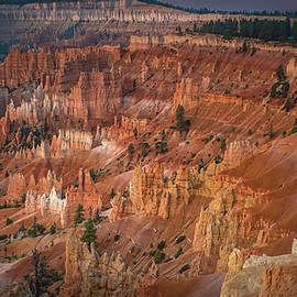 Queens Garden Sunrise - Bryce Canyon by Rebecca Herranen