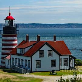Quoddy Striped Light by Suzanne Wilkinson