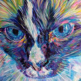Ragamuffin cat -male by Karin McCombe Jones