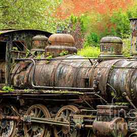 Railroad  Relic by Mitch Shindelbower