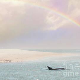 Rainbow Beach by Kelley Freel-Ebner