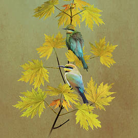 Bee-eaters in Japanese Maple Tree  by Spadecaller