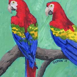 Rainbow Macaws by Katrina Gunn