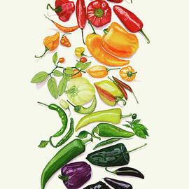 Rainbow Of Peppers Watercolor Art Print  by Deborah League