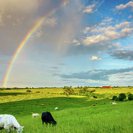 Rainbow over pasture in Central Kentucky by Alexey Stiop