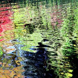 Rainbow Reflections by Debra Orlean