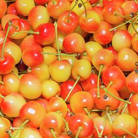 Rainier Cherries by Damian Pawlos