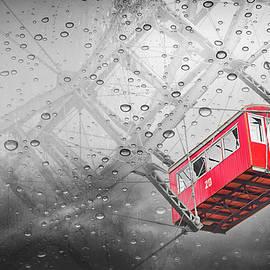 Rainy Day Ferris Wheel Prater Park Vienna Selective Color  by Carol Japp