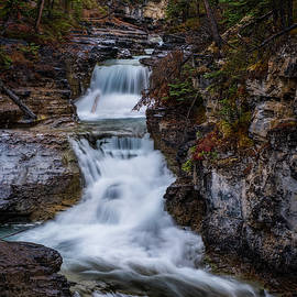 Rainy Fall Morning in the Canadian Rockies by Yves Gagnon