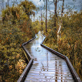 Rainy Reflections on the Boardwalk Trail in Autumn by Debra and Dave Vanderlaan