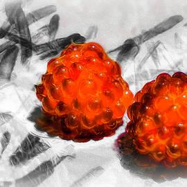 Raspberries by Jim Love