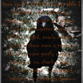 Raven At The Door - Quote by Marie Jamieson