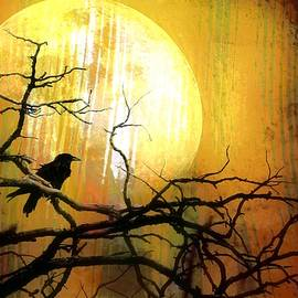 Raven's Moon by Barbara Chichester