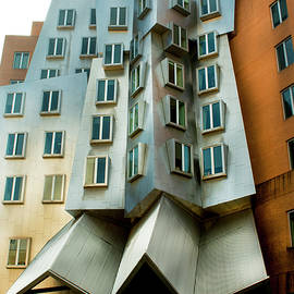 Ray and Maria Stata Center by Ivete Basso Photography