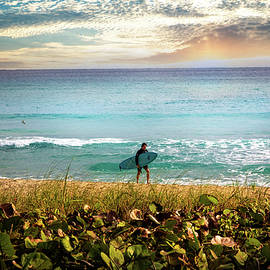 Ready to Surf the Waves by Debra and Dave Vanderlaan
