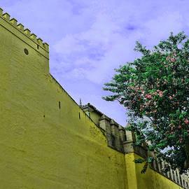 Real Alcazar 4 - Seville by Allen Beatty