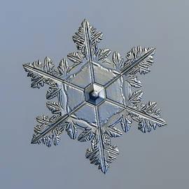 Real snowflake 2016-01-03_1 by Alexey Kljatov