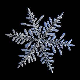 Real snowflake 2018-12-18_1 by Alexey Kljatov