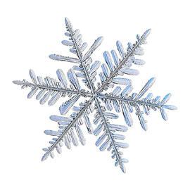 Real snowflake 2018-12-18_1w by Alexey Kljatov