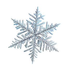 Real snowflake 2018-12-18_2w by Alexey Kljatov