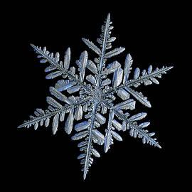 Real snowflake 2018-12-18_3 by Alexey Kljatov