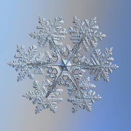 Real snowflake 2021-02-11_1 by Alexey Kljatov