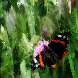 Red Admiral Butterfly on Abstracted Background by Western Exposure
