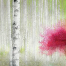Red Among the Birches by Terry Davis